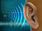 Προκήρυξη Π.Μ.Σ. στην «Ακοολογία - Νευροωτολογία», ΕΚΠΑ